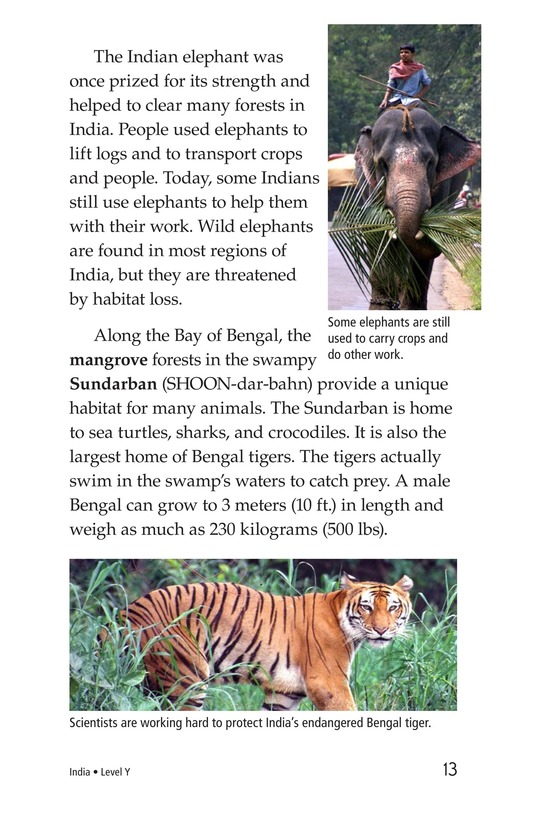 Book Preview For India Page 13