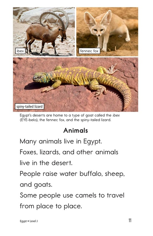 Book Preview For Egypt Page 11