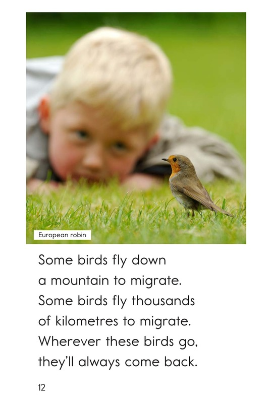 Book Preview For Some Birds Go Page 12