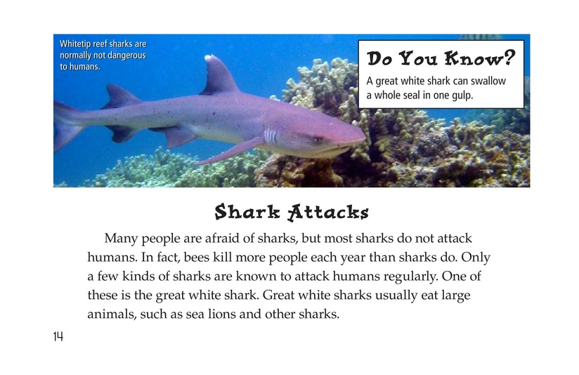 Book Preview For Sharks Page 14