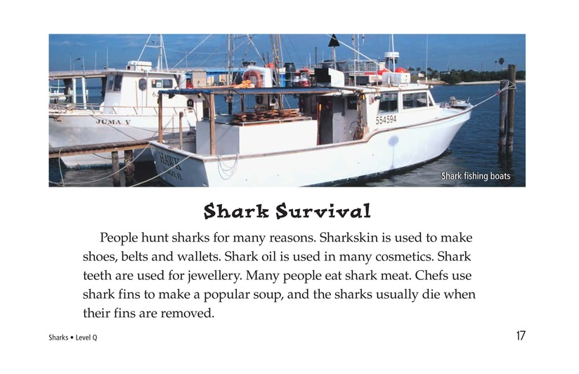 Book Preview For Sharks Page 17