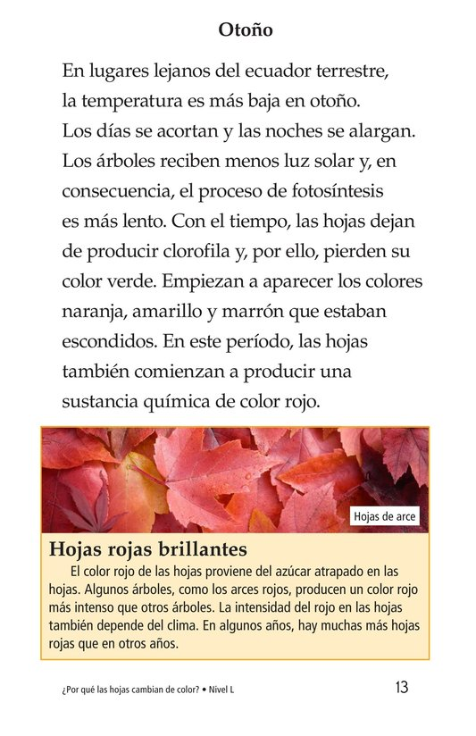 Book Preview For Why Do Leaves Change Color? Page 13
