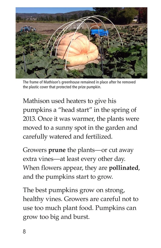 Book Preview For Giant Pumpkins Page 8