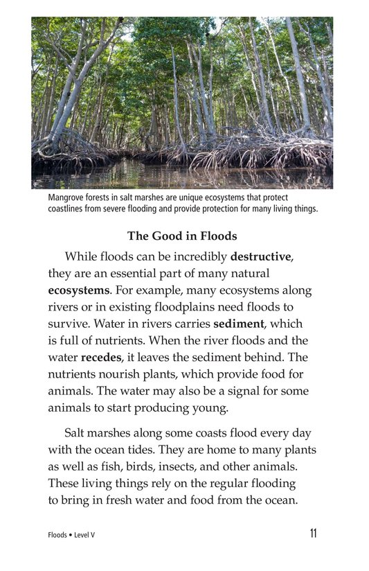 Book Preview For Floods Page 11