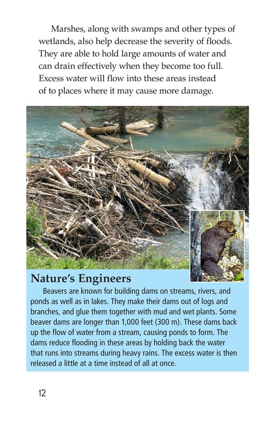Book Preview For Floods Page 12