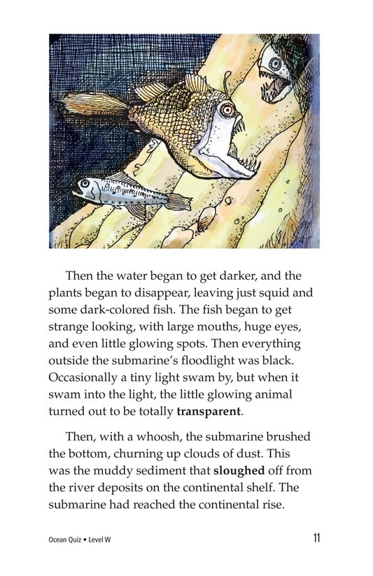 Book Preview For Ocean Quiz Page 11