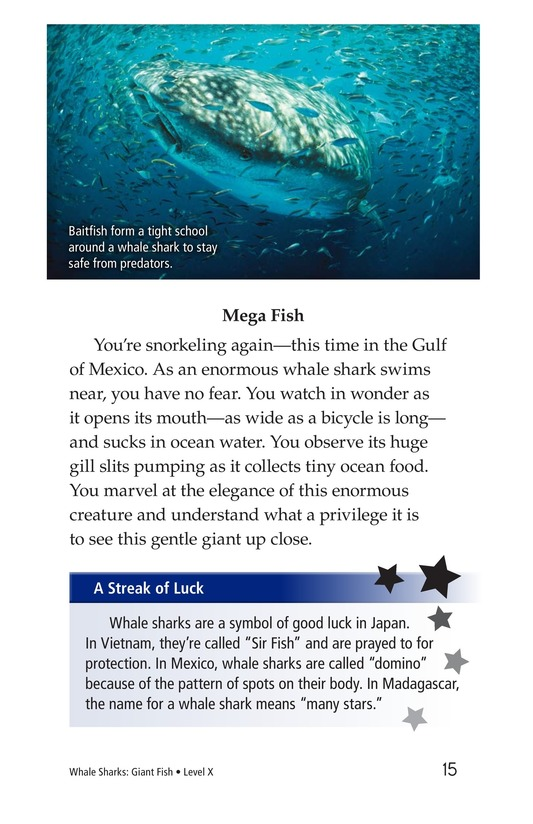 Book Preview For Whale Sharks: Giant Fish Page 15