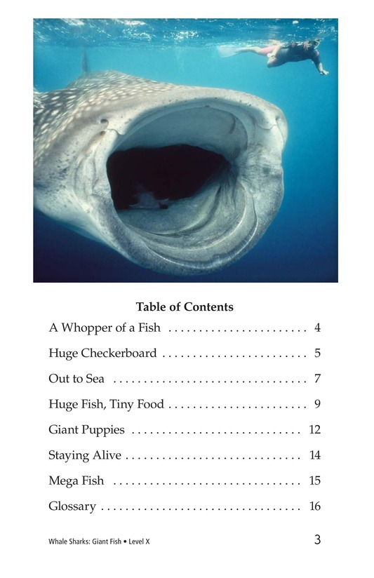Book Preview For Whale Sharks: Giant Fish Page 3