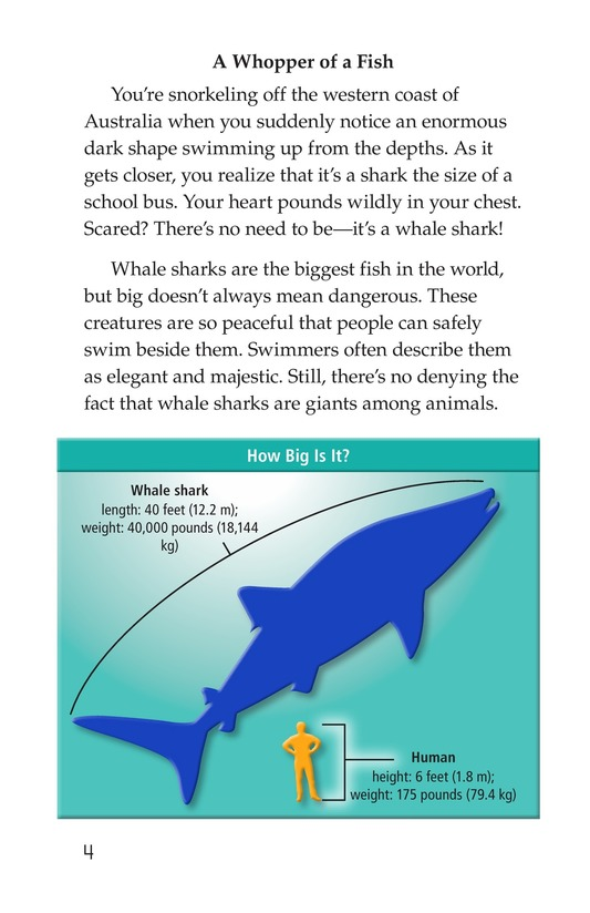 Book Preview For Whale Sharks: Giant Fish Page 4