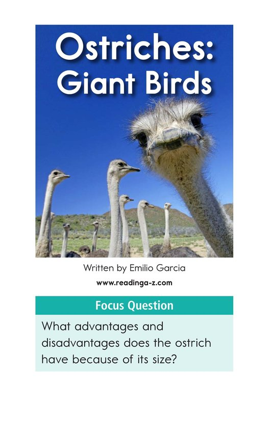 Book Preview For Ostriches: Giant Birds Page 2