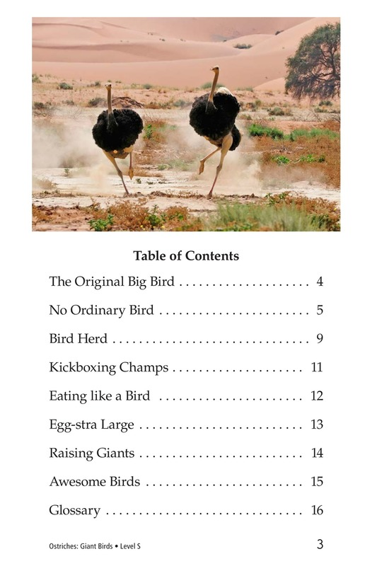 Book Preview For Ostriches: Giant Birds Page 3