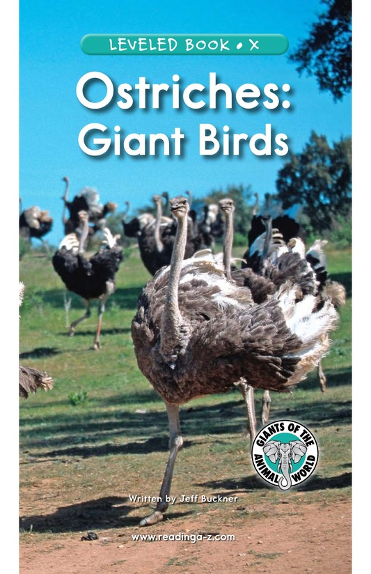 Book Preview For Ostriches: Giant Birds Page 1