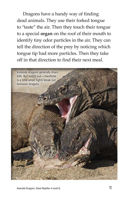 Book Preview For Komodo Dragons: Giant Reptiles Page 11