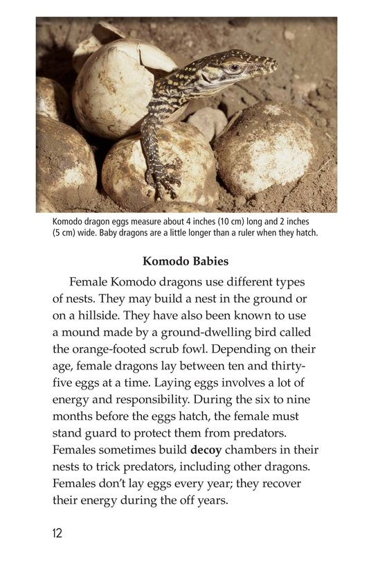 Book Preview For Komodo Dragons: Giant Reptiles Page 12