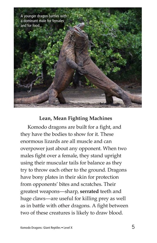 Book Preview For Komodo Dragons: Giant Reptiles Page 5