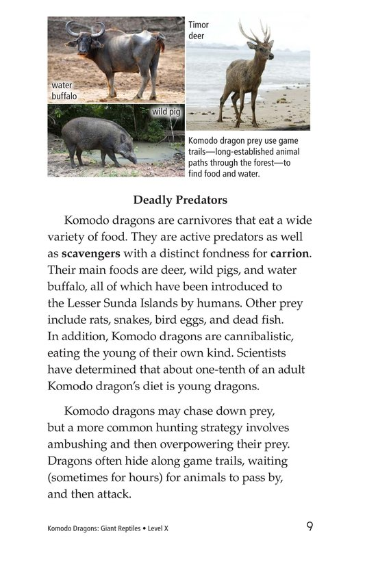 Book Preview For Komodo Dragons: Giant Reptiles Page 9
