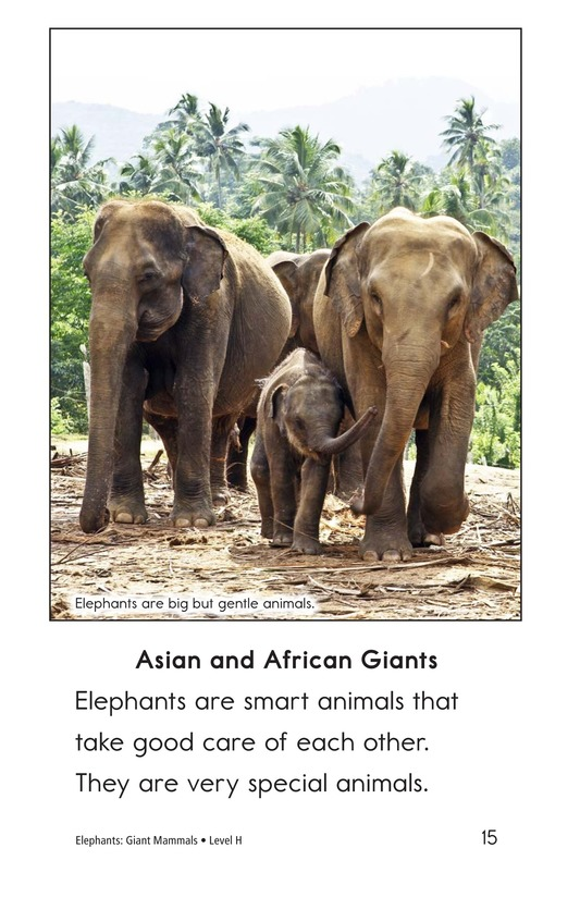 Book Preview For Elephants: Giant Mammals Page 15