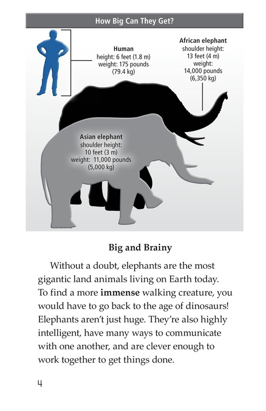 Book Preview For Elephants: Giant Mammals Page 4