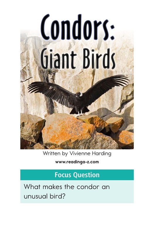 Book Preview For Condors: Giant Birds Page 2
