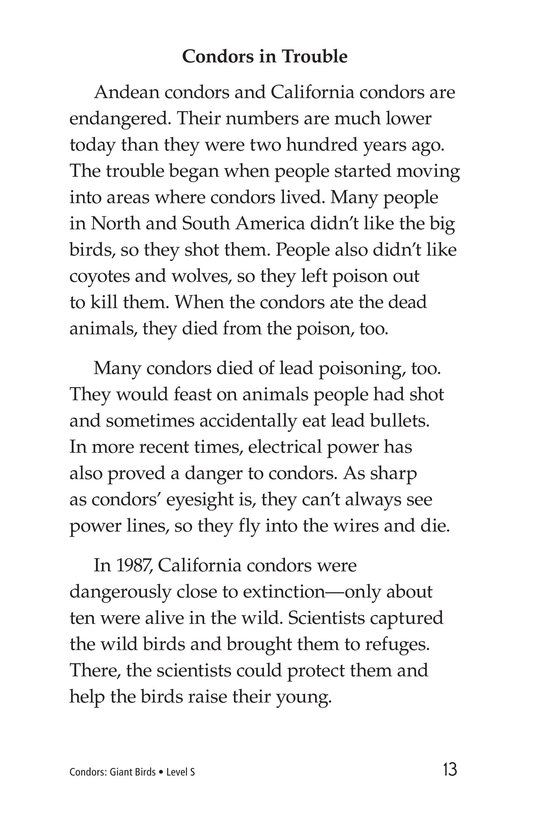 Book Preview For Condors: Giant Birds Page 13