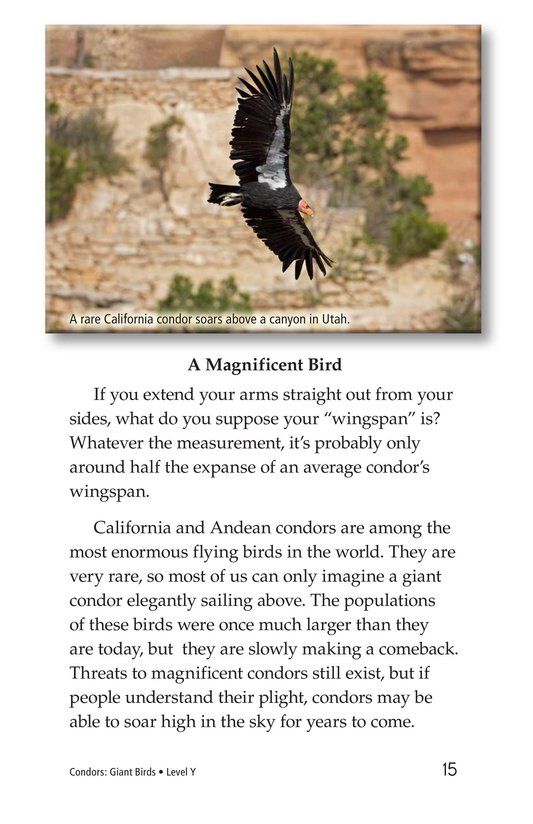 Book Preview For Condors: Giant Birds Page 15