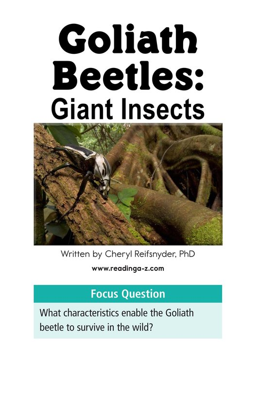Book Preview For Goliath Beetles: Giant Insects Page 2