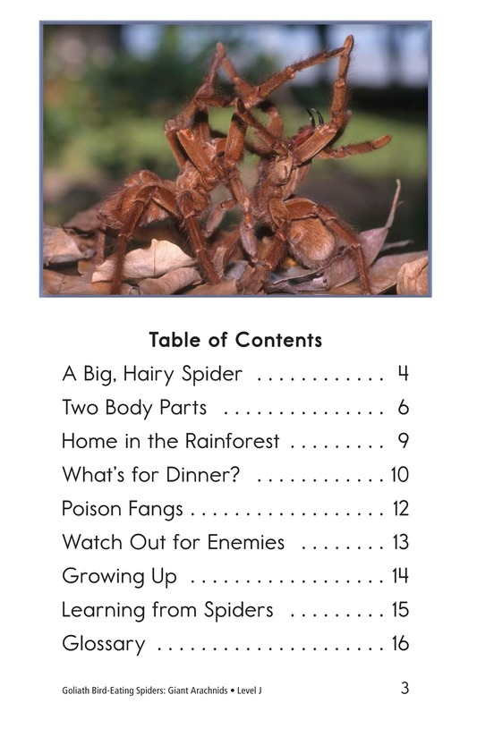 Book Preview For Goliath Bird-Eating Spiders: Giant Arachnids Page 3