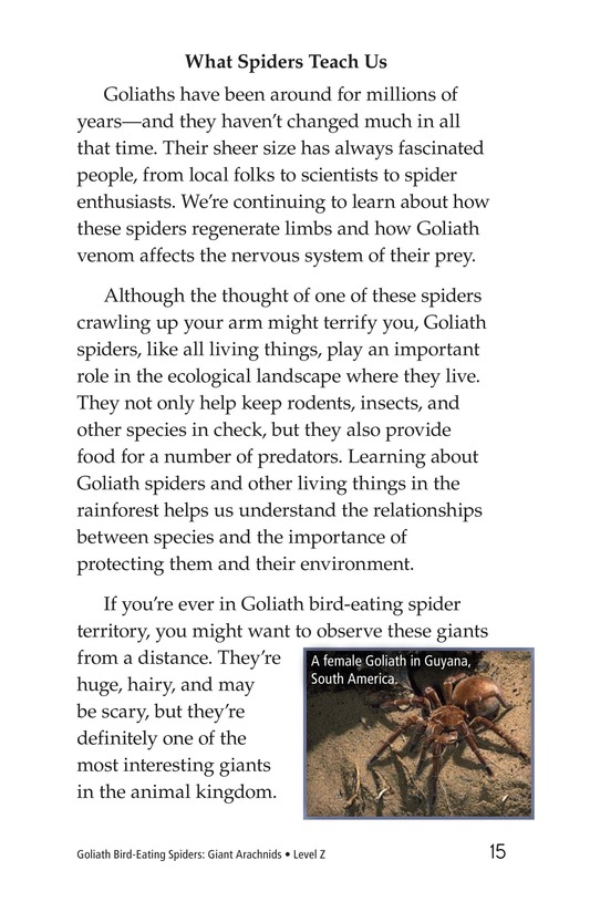 Book Preview For Goliath Bird-Eating Spiders: Giant Arachnids Page 15