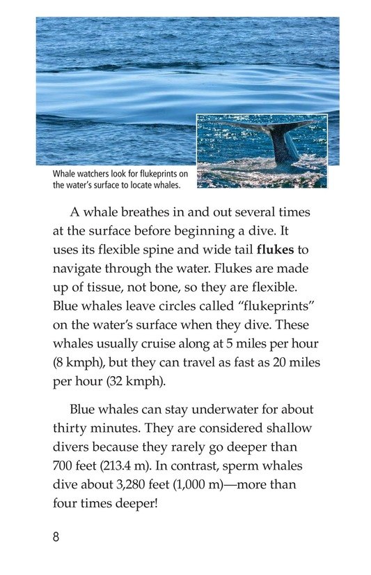 Book Preview For Blue Whales: Giant Mammals Page 8