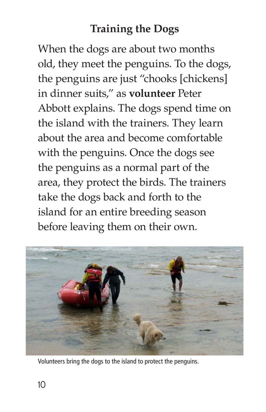 Book Preview For Guardian Dogs: Penguin Protectors Page 10