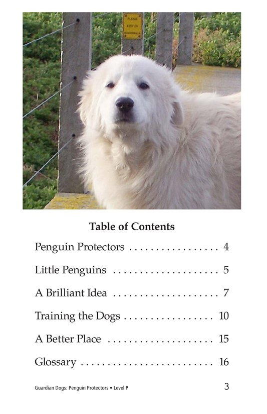 Book Preview For Guardian Dogs: Penguin Protectors Page 3