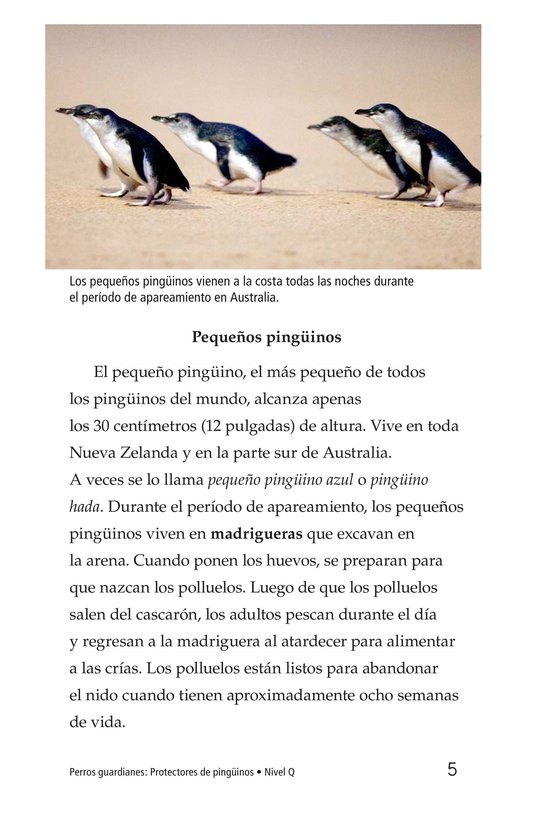 Book Preview For Guardian Dogs: Penguin Protectors Page 5