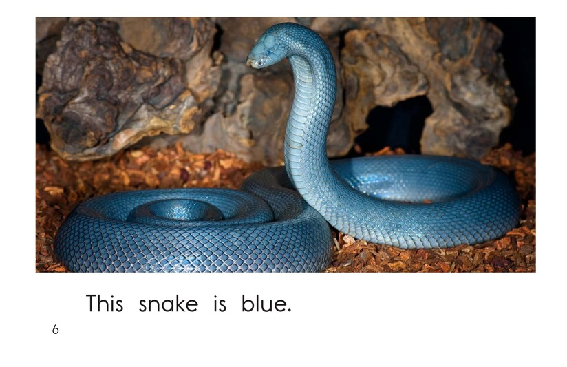 Book Preview For Snake Colors Page 6