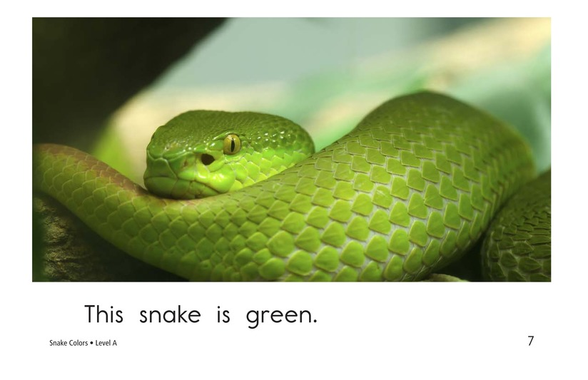 Book Preview For Snake Colors Page 7