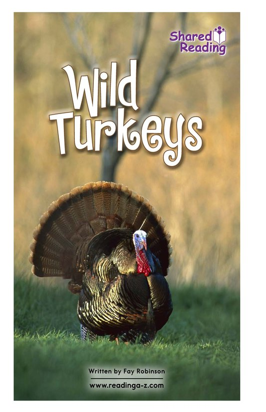 Book Preview For Wild Turkeys Page 1
