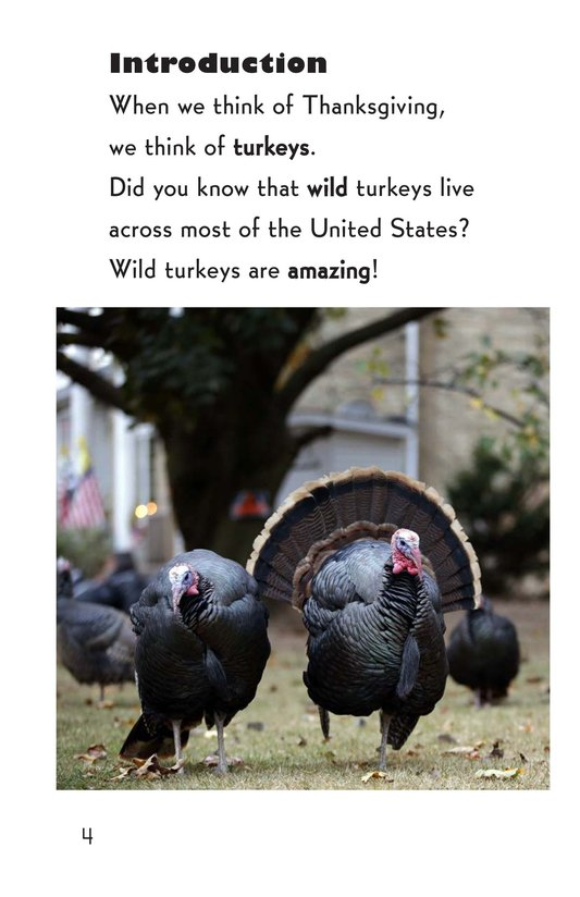 Book Preview For Wild Turkeys Page 4