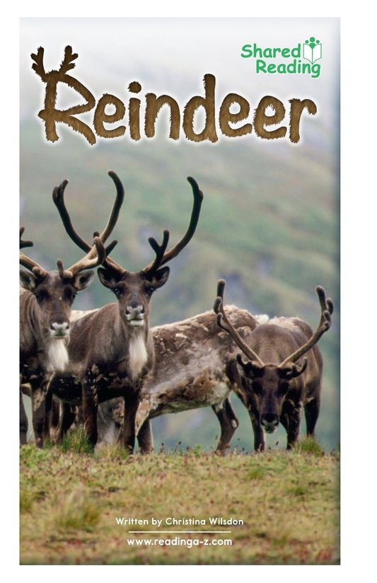 Book Preview For Reindeer Page 1