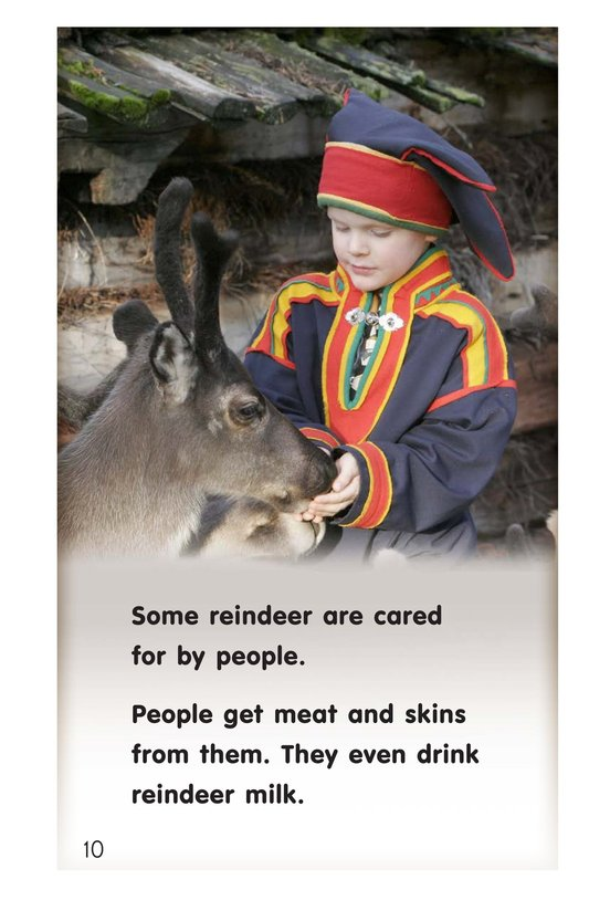 Book Preview For Reindeer Page 10