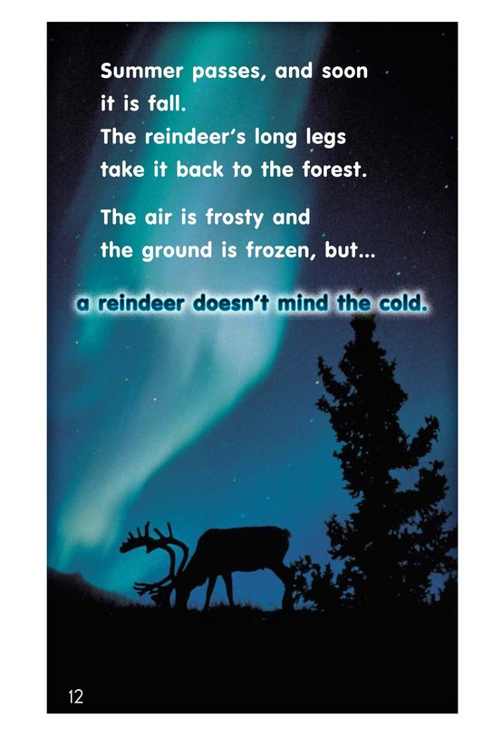 Book Preview For Reindeer Page 12