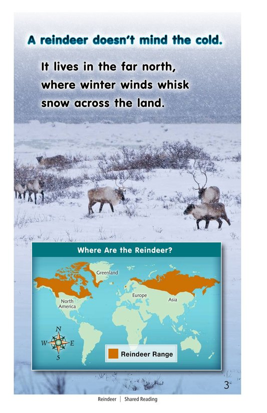 Book Preview For Reindeer Page 3
