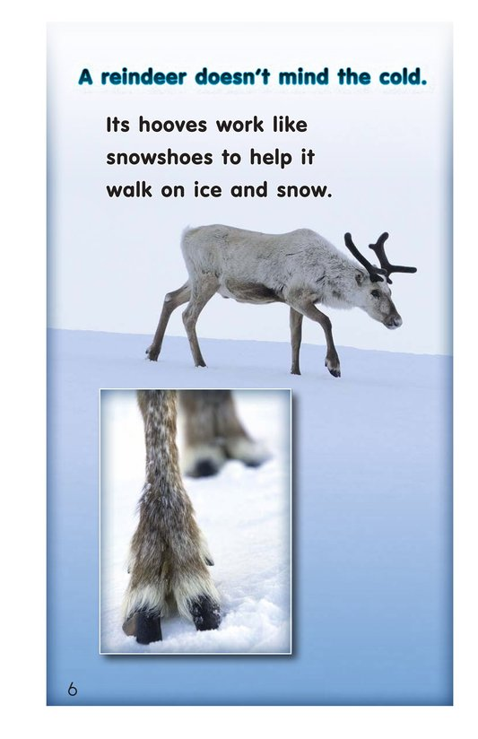 Book Preview For Reindeer Page 6