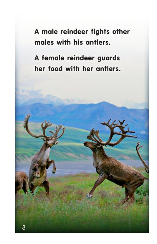 Book Preview For Reindeer Page 8