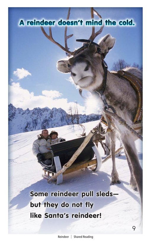 Book Preview For Reindeer Page 9