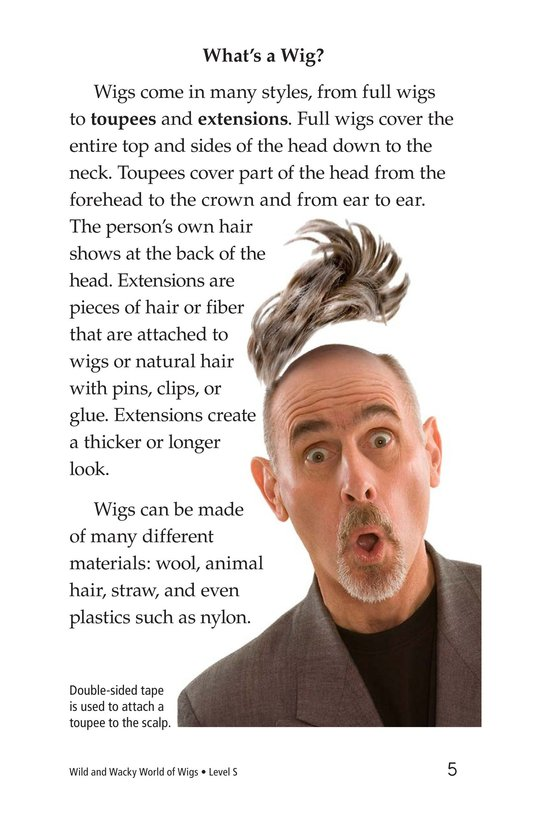 Book Preview For Wild and Wacky World of Wigs Page 5