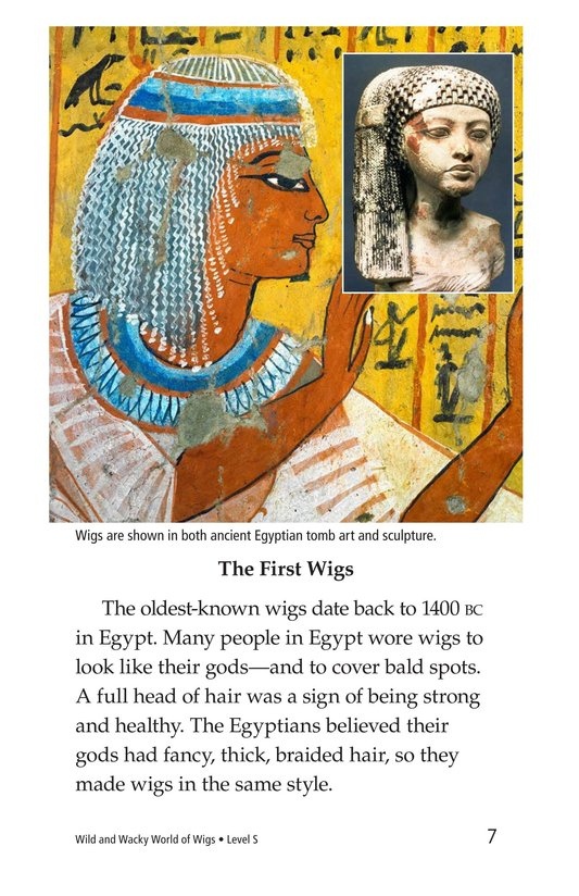 Book Preview For Wild and Wacky World of Wigs Page 7