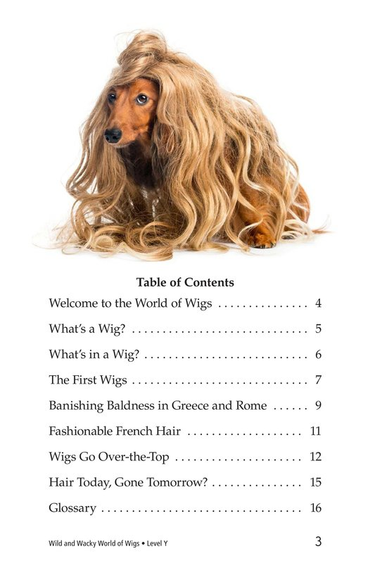 Book Preview For Wild and Wacky World of Wigs Page 3