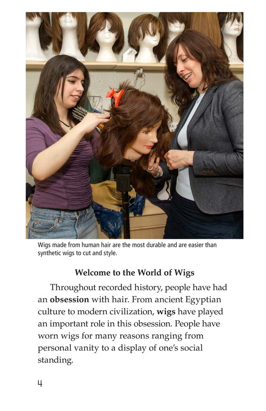 Book Preview For Wild and Wacky World of Wigs Page 4