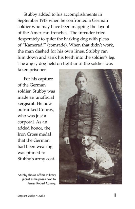 Book Preview For Sergeant Stubby Page 11