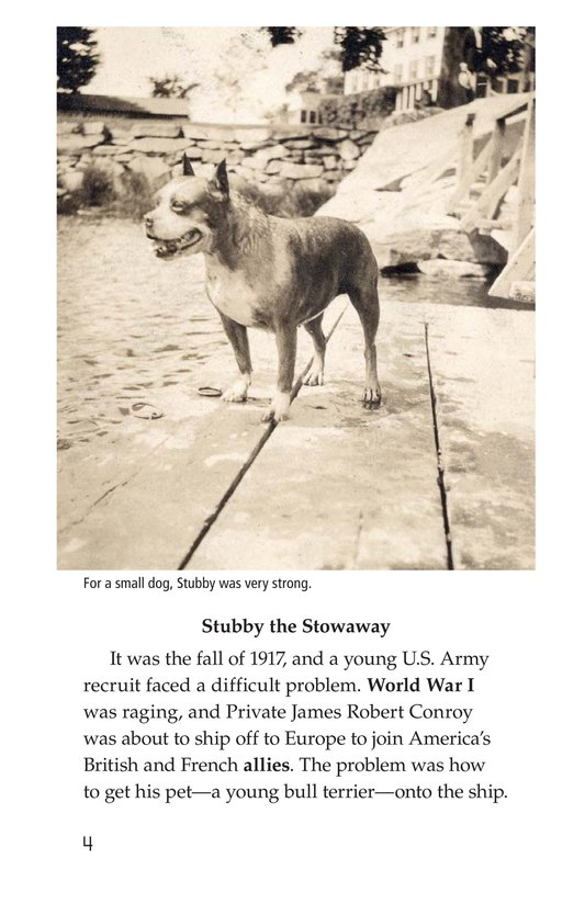 Book Preview For Sergeant Stubby Page 4