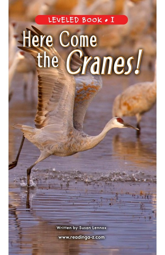 Book Preview For Here Come the Cranes! Page 1